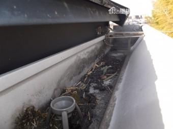 屋根点検 カラーベスト スレート コロニアル 褪色 コケの付着