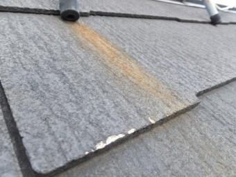 屋根点検 カラーベスト 褪色 カビ
