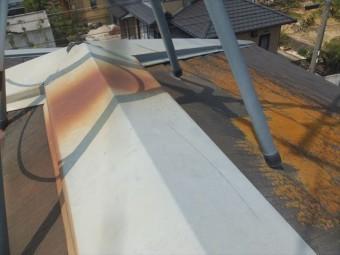 屋根点検 カラーベスト 棟鈑金 褪色 サビコケやカビ