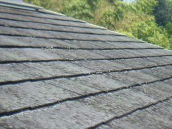 屋根点検 褪色 塗膜の劣化
