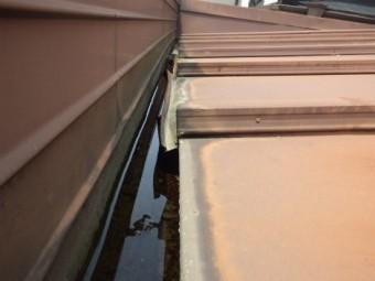 U瓦と瓦棒屋根