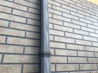 IMG_0246-columns2