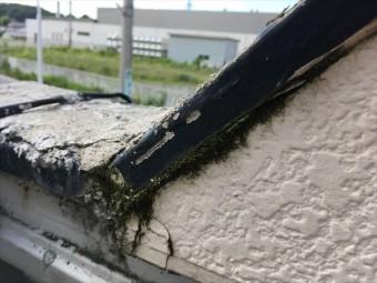外壁点検 サイディング コケ 塗膜剥離