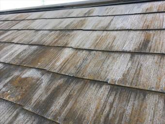 屋根 スレート 褪色 カビの付着 割れ