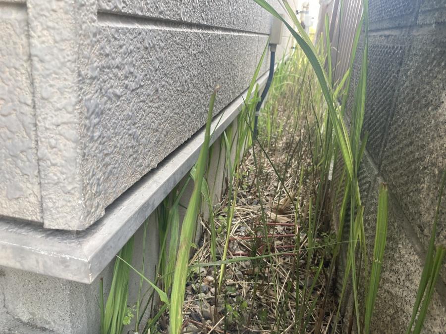 外壁点検 土台水切り