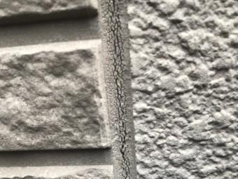 IMG_8274-columns2
