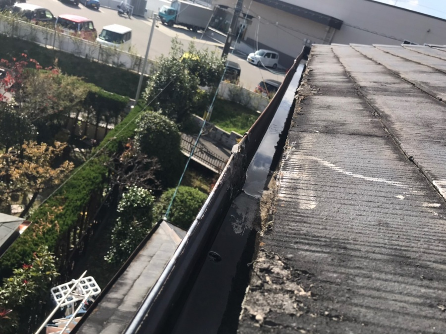 豊田市で雨樋の勾配不良?コケの溜まり?
