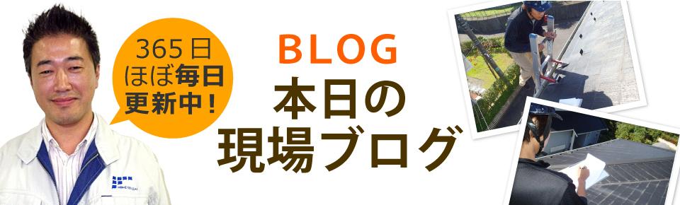 豊田・岡崎・刈谷・知立・安城市やその周辺エリア、その他地域のブログ